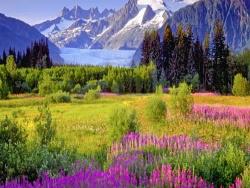 Alaska Mendenhall Glacier